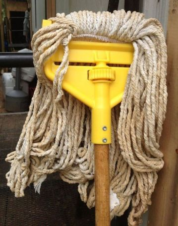 'I'm tired of mopping around all day--and I need to wash my hair!' (brightside.me)