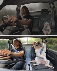 'Me and Dad forever!' -KeNtLuN (boredpanda.com)