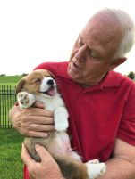 'My Dad meeting his first granddogger' RufustheCorgi (boredpanda.com)