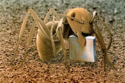 Ant carrying a computer microchip - from 'Microcosmos' by Brandon Broll (amazon.com)