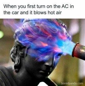 Cool in the Car (boredpanda.com)