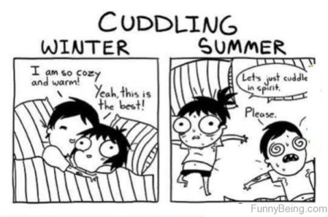 Cuddle Me Not (funnybeing.com)