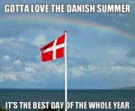 Summer in Denmark (funnybeing.com)