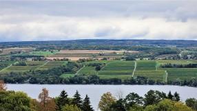 Seneca Lake vineyards