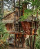Treehouse home, Washington (simpledreams.earth)