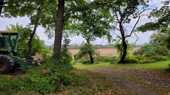 Westfield - Gold Brook Farm