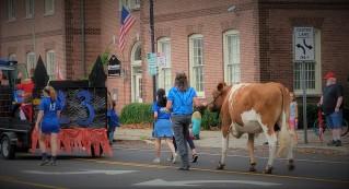 Westfield Homecoming Parade 6